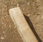 [1] a piece of ash.