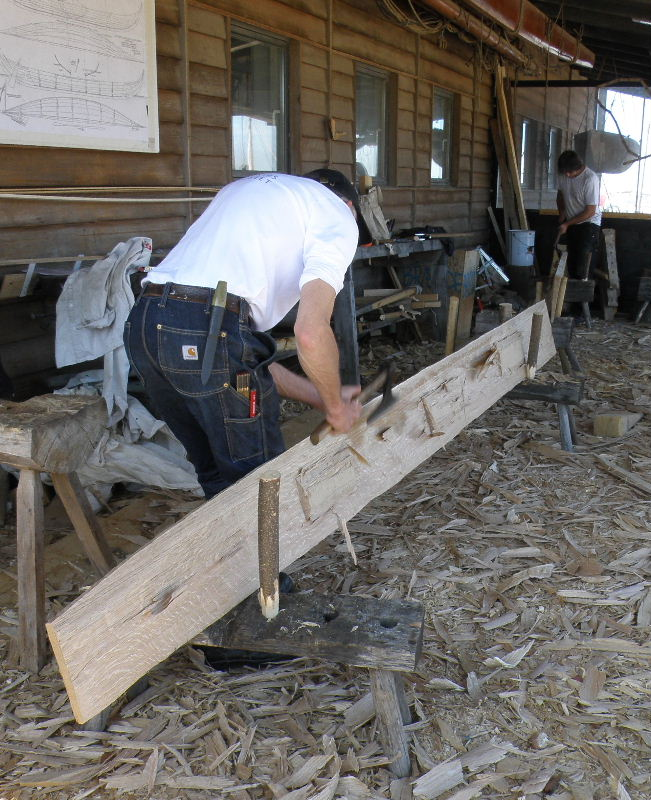 Mike then uses a broad axe - with a long, straight cutting edge - to slice through the partially-cut wood fibres. He moves the axe downwards, cutting from the top of the plank. This removes large shavings which are scattered on the ground. The axe handle curves to the right, away from the plank, so that Mike's hands pass freely with each stroke and don't hit the wood.