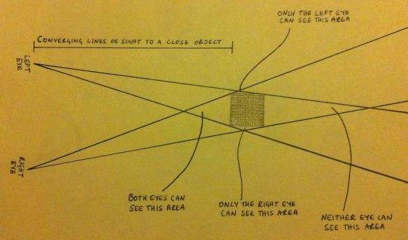 A diagram illustrating Leonardo Da Vinci's comments on human sight.