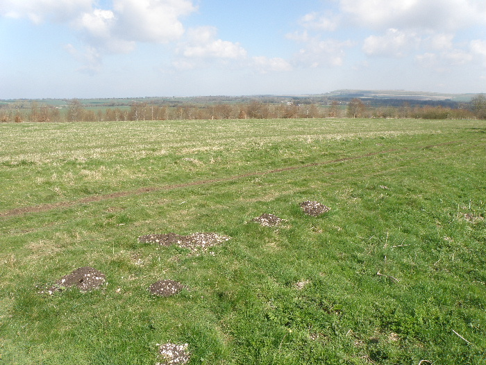 Burderop Down sarsen working site