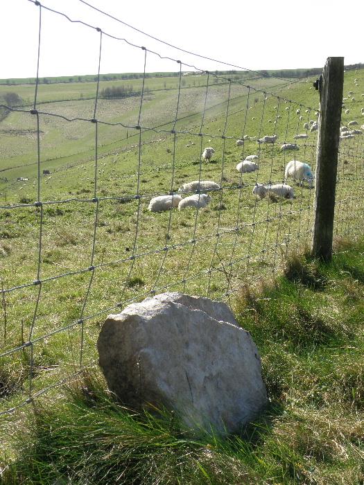 sarsen stone
