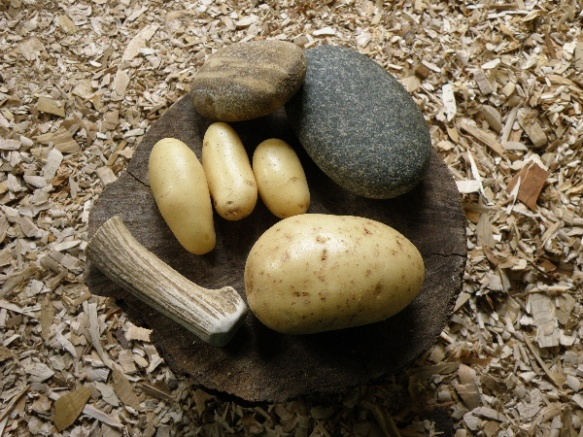 knapping tools and potatoes